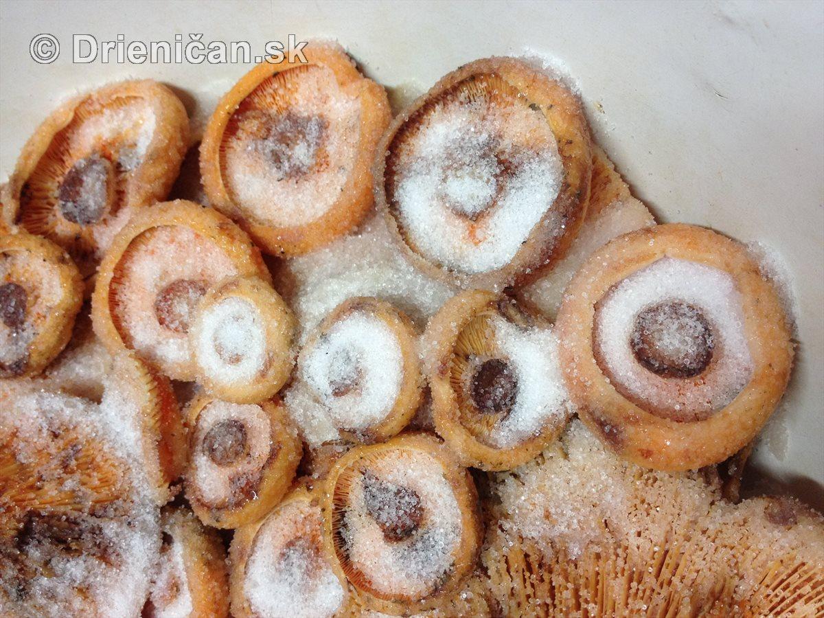 Starý recept na uchovanie rýdzikov v soli