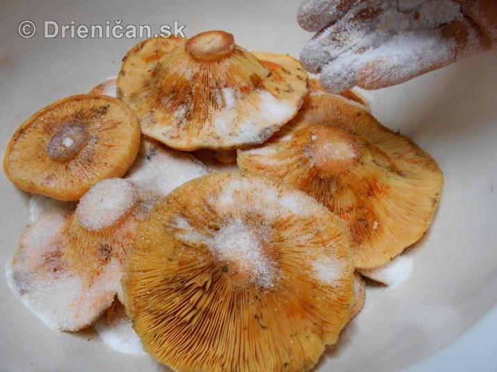 Stary recept na uchovanie rydzikov v soli_03