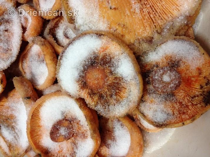 Stary recept na uchovanie rydzikov v soli_05