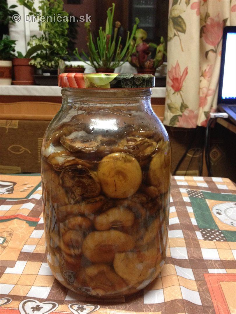 Stary recept na uchovanie rydzikov v soli_12