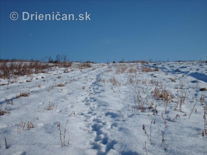 Drienica sneh foto panoramy_16