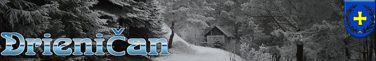 Logo č.70 , domček pod lesom...v zime, Drienica !