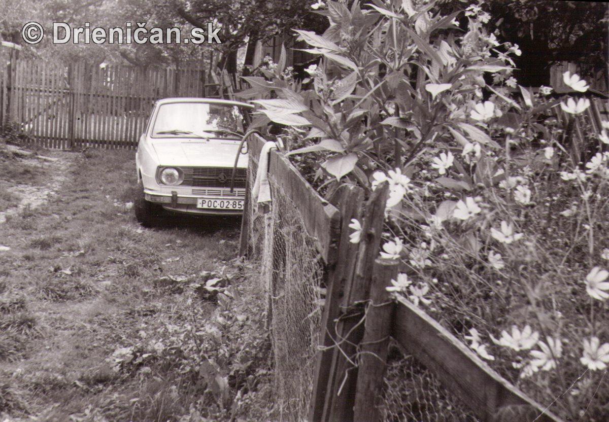 Embéčka na dvore a kvet Hrubý Janko