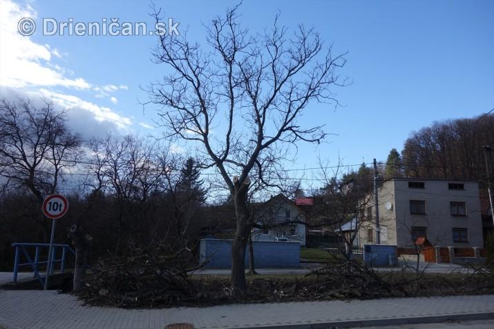 jarna uprava stromov drienica foto