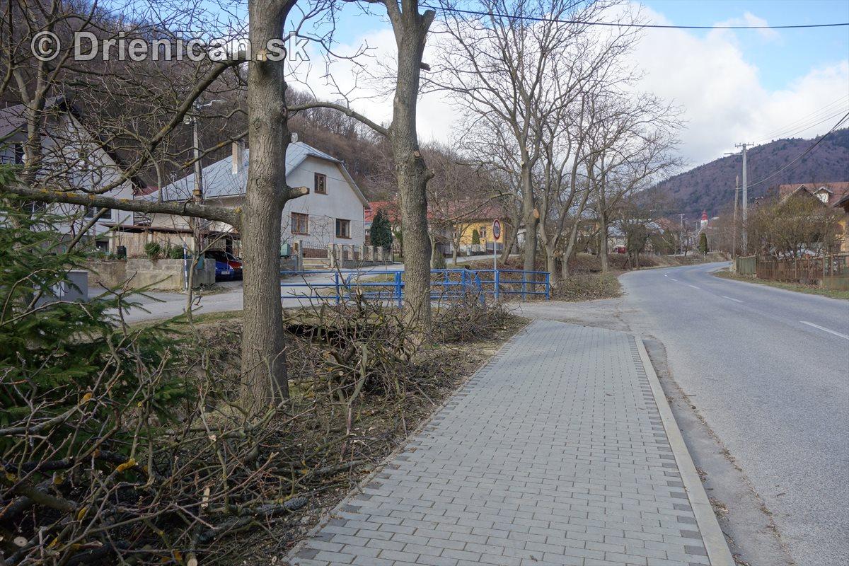 Jarná úprava stromov pri hlavnej ceste