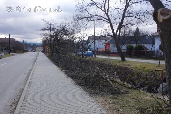 jarna uprava stromov drienica_06