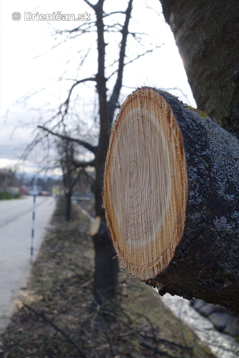 jarna uprava stromov drienica_11
