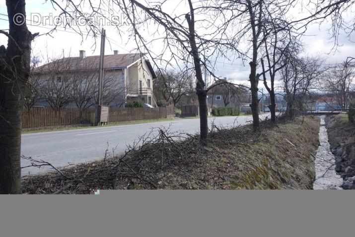 jarna uprava stromov drienica_12