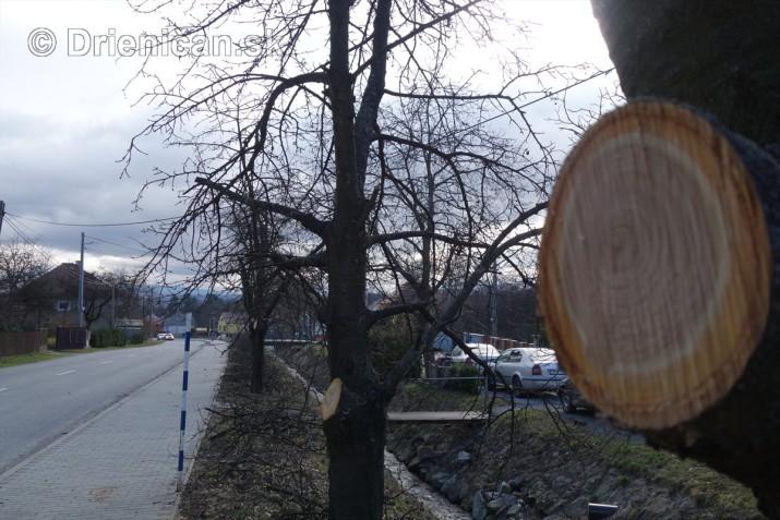 jarna uprava stromov drienica_14