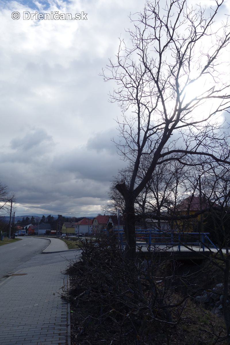 jarna uprava stromov drienica_17