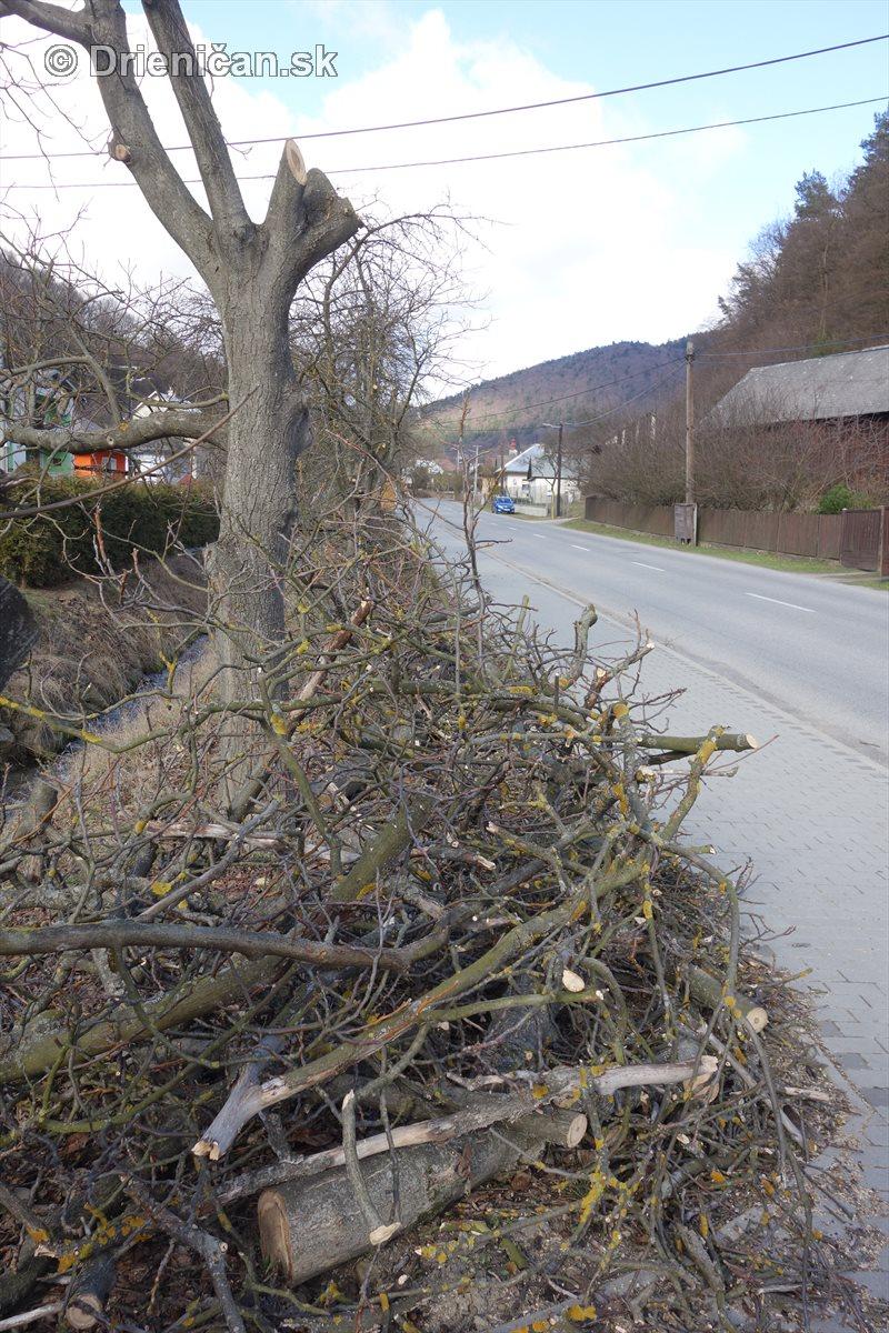 jarna uprava stromov drienica_18
