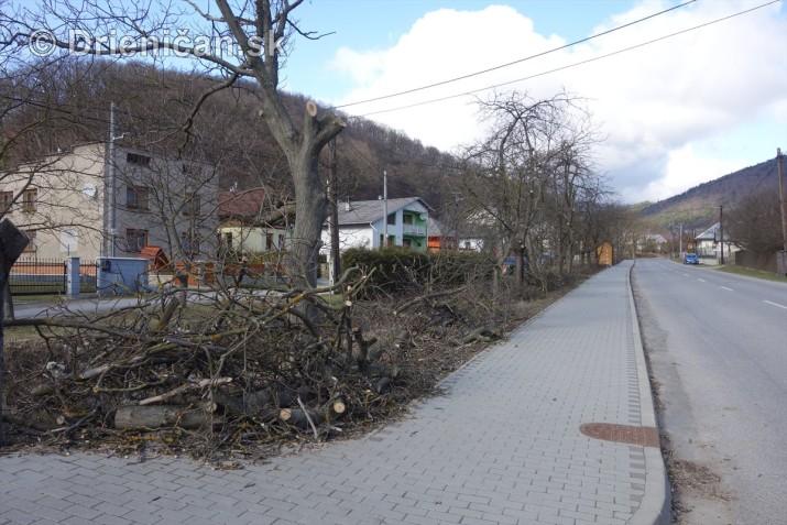 jarna uprava stromov drienica_19