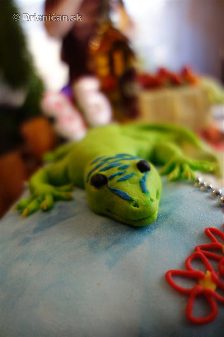 syrova torta foto_13