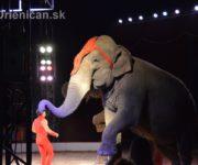 Cirkus Aleš v Prešove