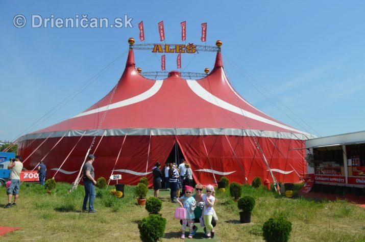 cirkus ales foto_05