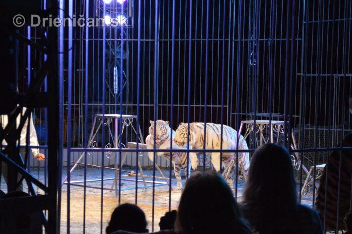 cirkus ales foto_09