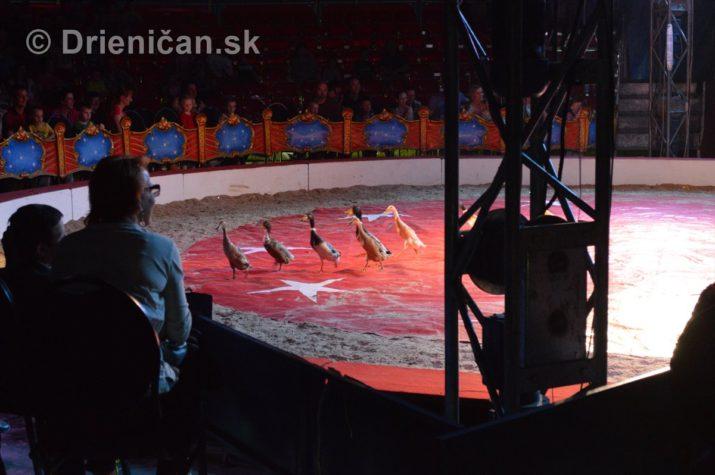cirkus ales foto_22