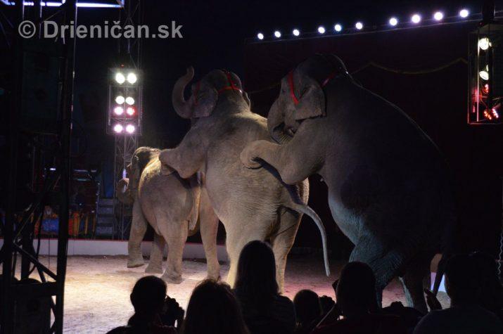 cirkus ales foto_31