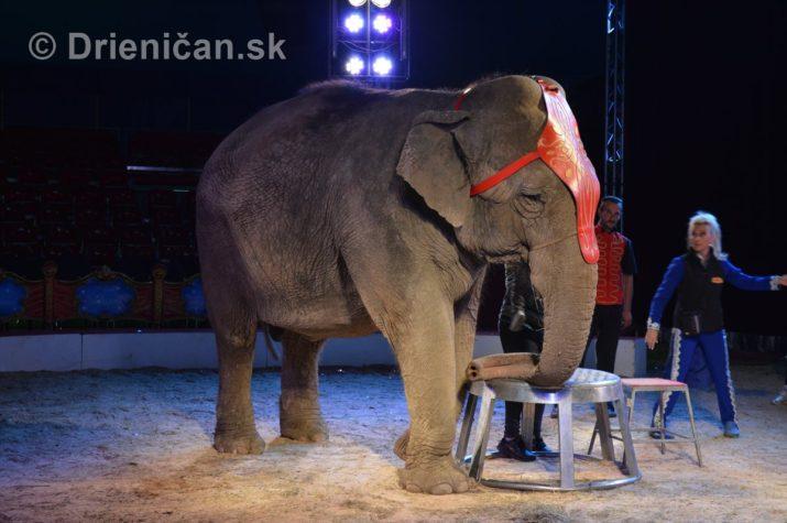 cirkus ales foto_34