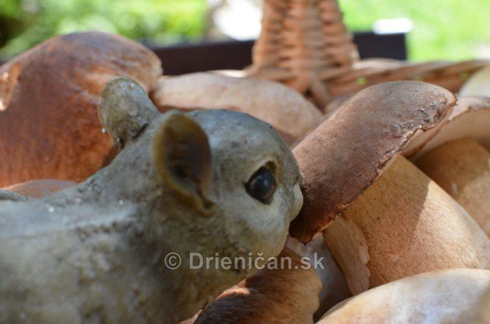 vevericka potrava hriby_31