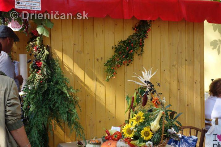 2016-jesenny-kulturny-festival-sabinov_06