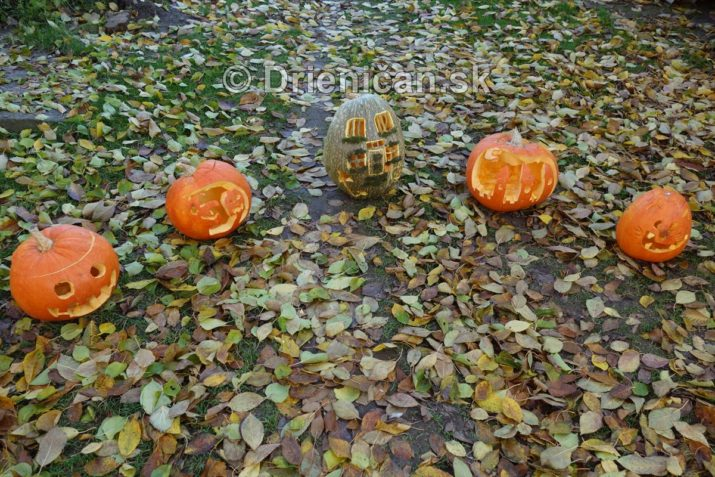 tekvicovy-den-halloween_03