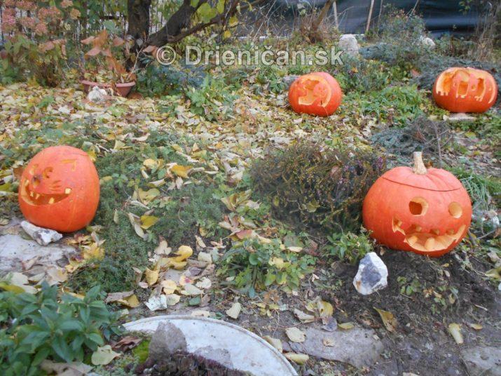 tekvicovy-den-halloween_12