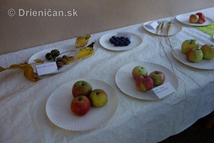 den-zahradkara-drienica-foto_05