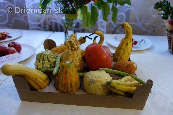 den-zahradkara-drienica-foto_15