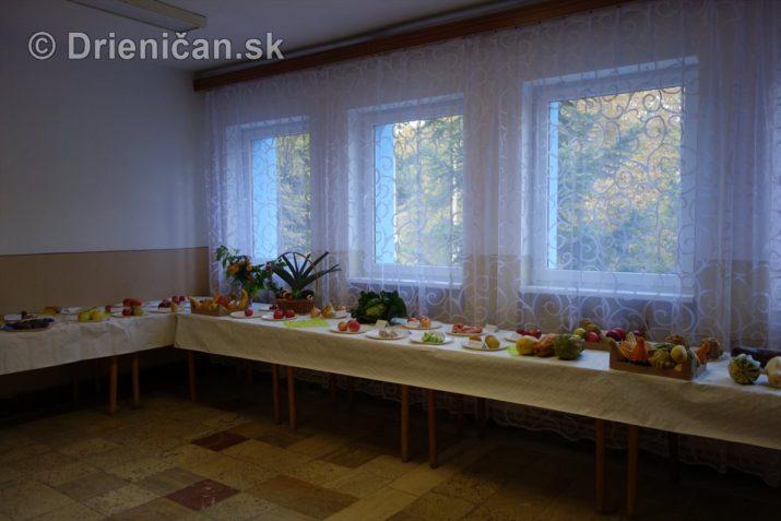 den-zahradkara-drienica-foto_20