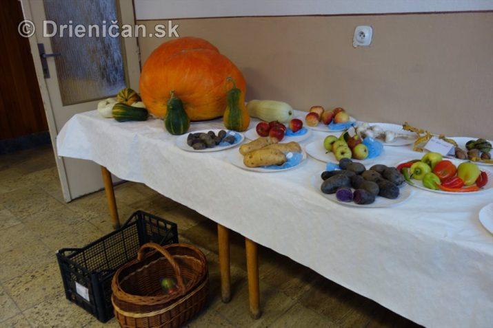 den-zahradkara-drienica-foto_27