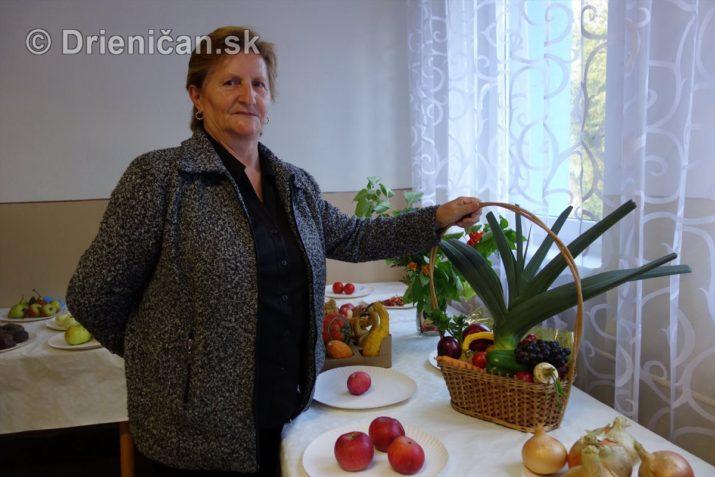den-zahradkara-drienica-foto_30