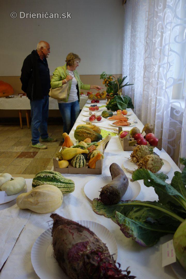 den-zahradkara-drienica-foto_35