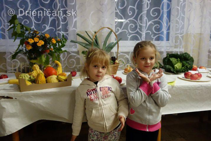 den-zahradkara-drienica-foto_45