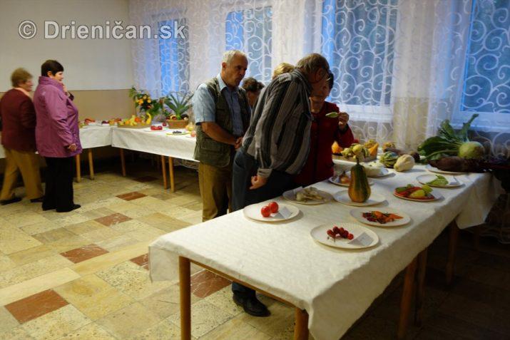 den-zahradkara-drienica-foto_46
