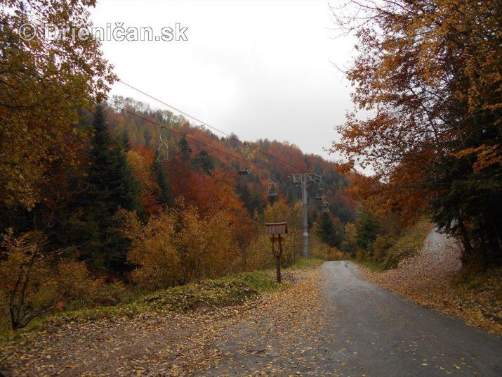 farebna-jesen-v-nasich-lesoch_55