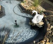 Záhradné jazierko aj s bielou labuťou
