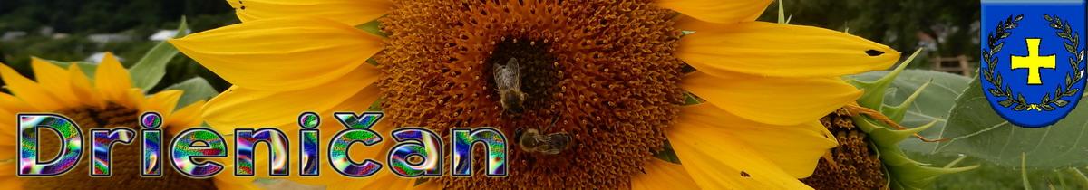 Logo č.92 , August-slnečnice a včely...
