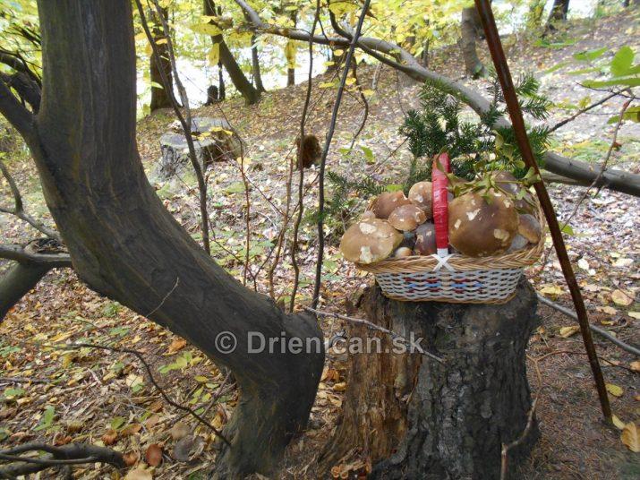 nejako takto, by mal vyzerať hubársky košík pri odchode z lesa :D