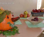 Záhradkárska výstava 2017 Drienica
