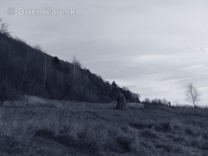 Čierno biela jeseň