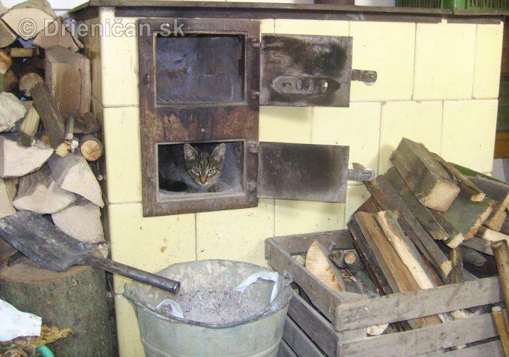 Mačka v peci = chladná zima ?
