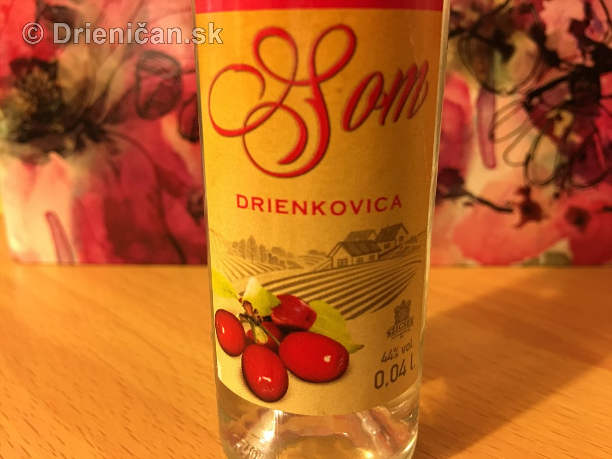 Drienica - Šoma