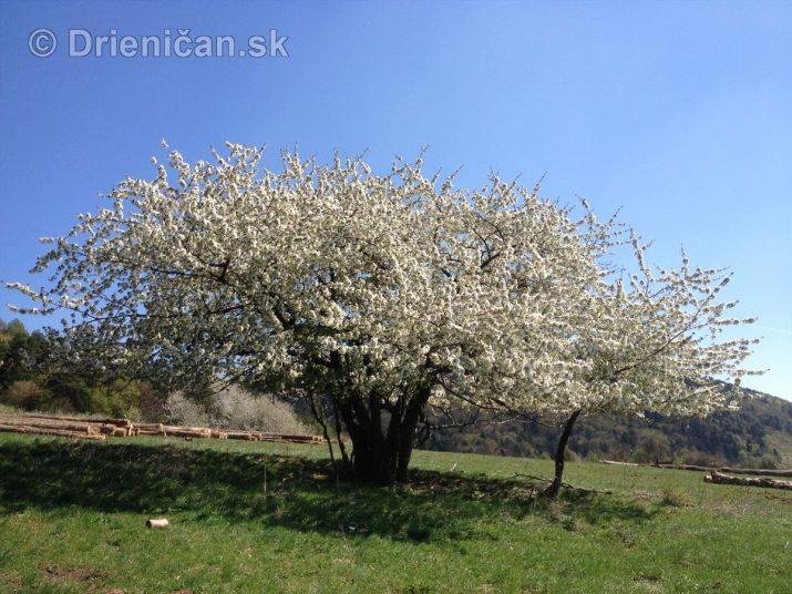 Pekný jarný deň na Drienici