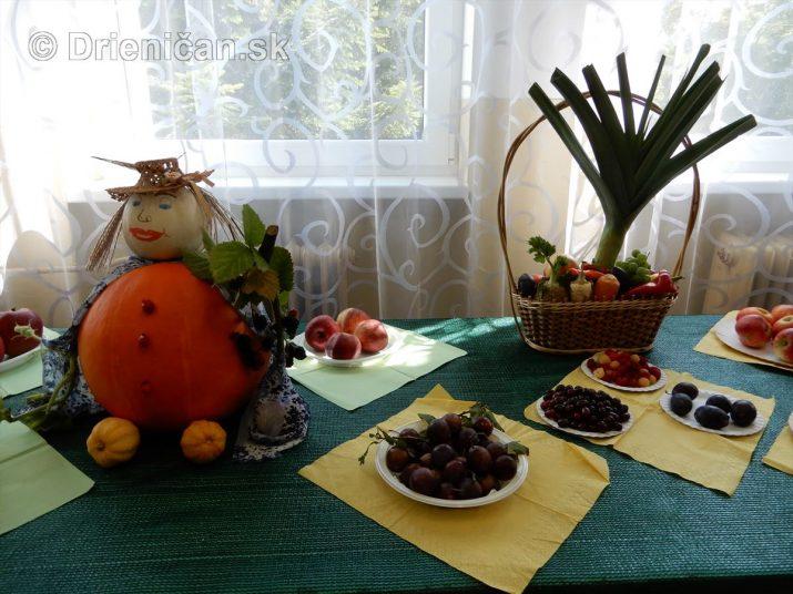 Záhradkárska výstava 2019 Drienica