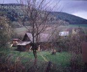 Historické momentky z obce Drienica